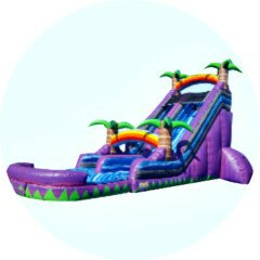 PenguinsUp Purple Tropical Water Slide Happy Birthday
