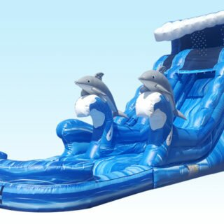 Dry/Water Slides