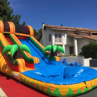PenguinsUp 14Ft Tropical Water Slide